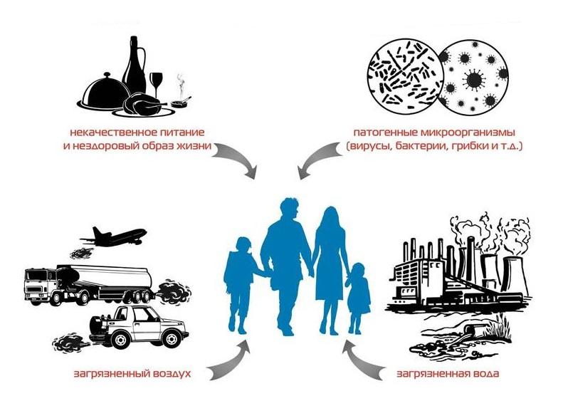 Причины заболеваний ЖКТ
